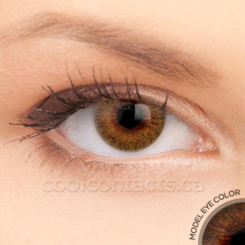 colors-7039-brown.jpg